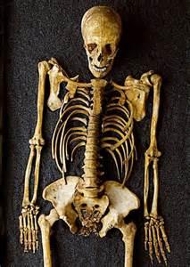 dead men   tales skeletons reveal  secrets
