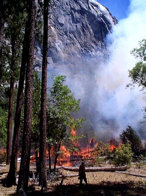 wildland fire planned fire photo gallery  national