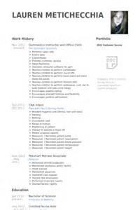 resume for petsmart office clerk resume sles visualcv resume sles database