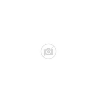 Legs Shelves Tapered Bookshelf Wood Solid Multiple