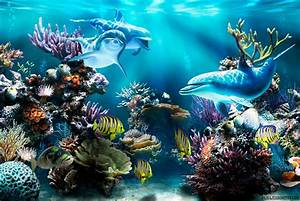 Fondo Pantalla Paisaje Delfines bajo Mar