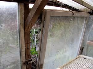 Gewächshaus Fenster Einbauen by Tomaten Im Gew 228 Chshaus Wachsen Sp 228 Rlich Bl 252 Ten Schimmeln