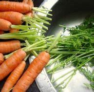 comment cuisiner les carottes comment faire manger des aliments sains aux enfants pratique fr
