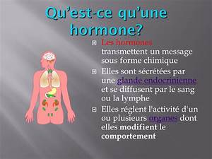 Qu Est Ce Qu Une Loggia : les hormones fran ais bi ppt video online t l charger ~ Dode.kayakingforconservation.com Idées de Décoration