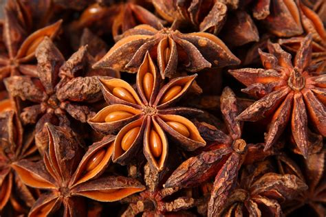 Lion Heart Herb Of The Month Star Anise