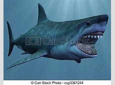 Drawing of Great White Shark 3D Render of an Great White