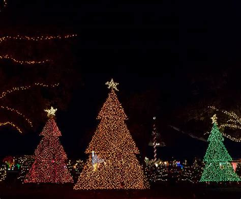 dancing lights of christmas at jellystone park in