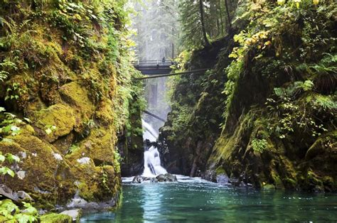 olympic national park duc sol washington falls usa north