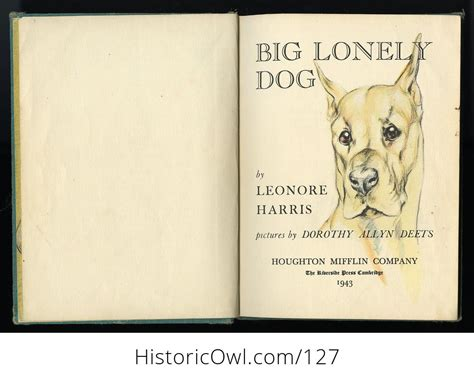 Vintage Illustrated Childrens Book Big Lonely Dog By