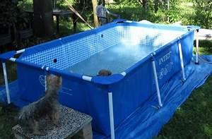 Hunde Pool Bauen : frage hundepool gr sse xxxxl seite 4 ~ Frokenaadalensverden.com Haus und Dekorationen