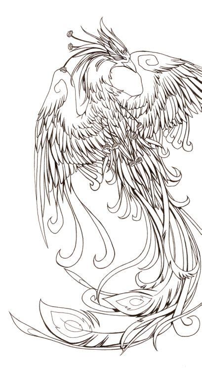phoenix tattoo  tumblr