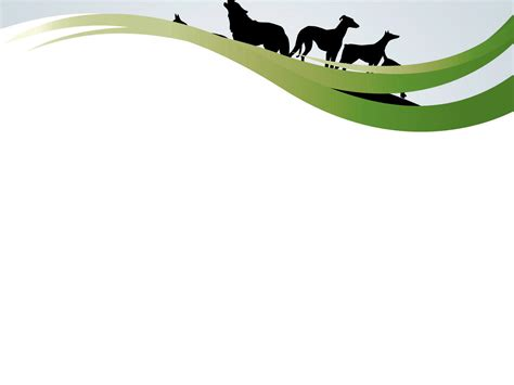 Animal Frame Wallpaper - frame with dogs powerpoint templates animals