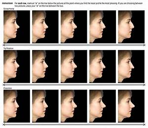 Best Types Of Nose Shapes?