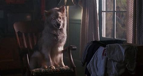 Revisiting The Film Of Stephen King's Pet Sematary 2