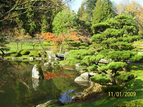 japanese tea garden seattle wa hours address