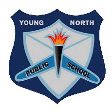 home young north public school