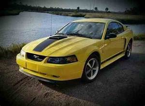Ford Mustang Mach 1 2003 | Ford Mustang Mach 1 With: One-Owner Cars For Sale