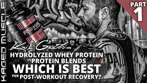 Hydrolyzed Whey Vs Protein Blends