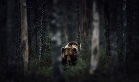2015 National Geographic Traveler Photo Contest  The Atlantic
