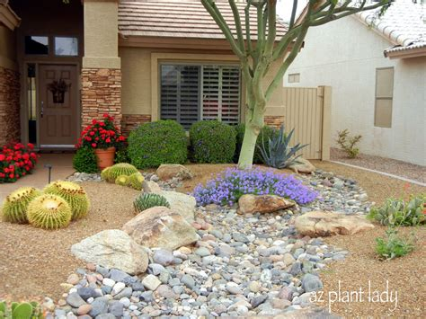 15+ Magnificent Small Backyard Desert Landscaping Ideas
