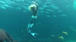 Sea Goddess Of Atlantis  Mermaid Melissa The Real Life