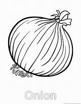 Onion Coloring Pages Vegetable sketch template