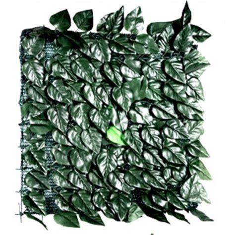 Rete Siepe con foglie Lauro