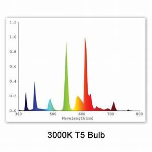 T5 Fluorescent Plant Grow Light Bulbs  U0026 Tubes From Acf