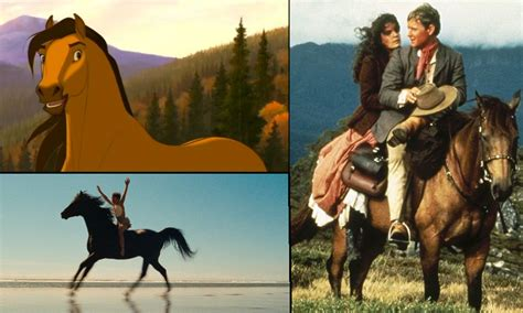 horse movies horses wild cowgirl films pretty racing stallion wednesday based doe tabor baby actual inspired events fun