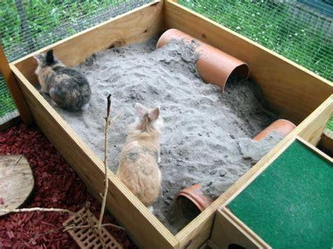 kaninchen außengehege selber bauen kaninchen kaninchen