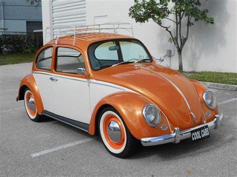 volkswagen beetle 1965 1965 vw beetle vw bug collector pinterest