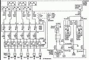 2000 Isuzu Rodeo Radio Wiring Diagram