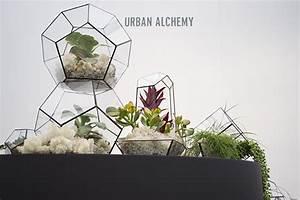 Acheter Terrarium Plante : terrarium gemme que j aime ma plante mon bonheur ~ Teatrodelosmanantiales.com Idées de Décoration