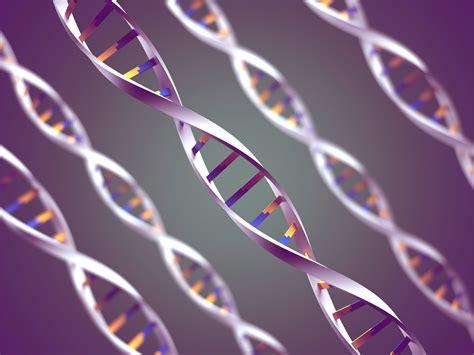 AIPMT Biology: Mastering the Genetic Code   Testprep ...