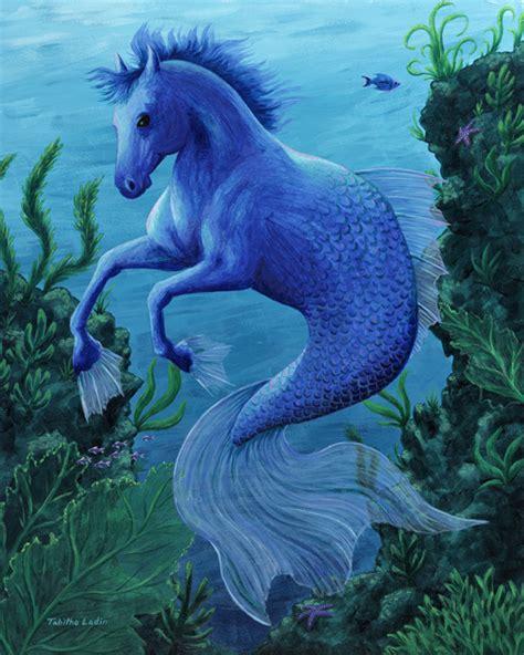 hippocampus fantasy photo  fanpop