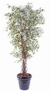 Arbre D Intérieur : arbre artificiel pas cher int rieur ext rieur artificiel flower ~ Preciouscoupons.com Idées de Décoration