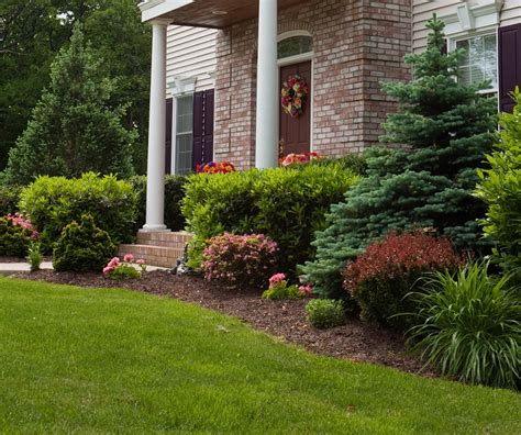 5 Tips To Keep Your Yard Clean And Tidy  Homey Improvements