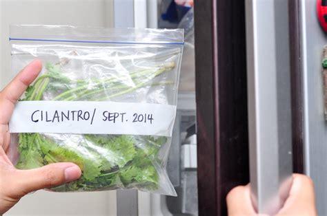 how to freeze cilantro image freeze cilantro step 4 version 2 jpg wikihow