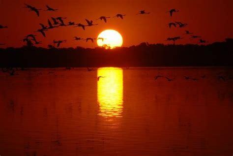 african sunset photo