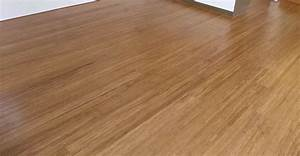 best laminate flooring for pet urine carpet review With removing dog urine odor from hardwood floors