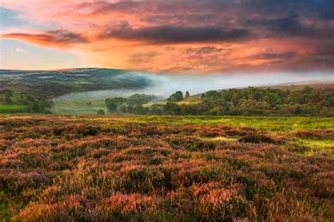 Guide to the North York Moors - Countryfile.com