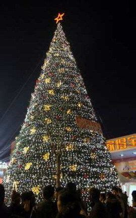 christmas trees for where to buy christmas trees the beijinger 7572
