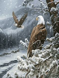 Animated Eagle Wallpaper - animation moving 3d animated free soar eagle fly