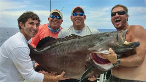 grouper fishing fish record florida caught largest catch cnn super tackle box ever catches