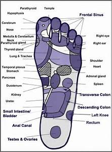 Chinese Foot Chart Therapy Chinese Foot