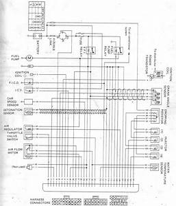 Nissan Pulsar Wiring Diagram Manual