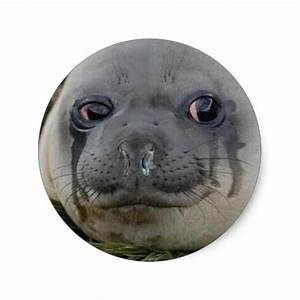 Crying Seal Meme Cough Your Lungs Out Round Sticker Zazzle
