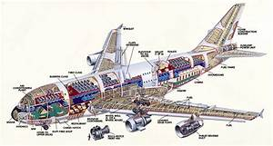 Air Bus Diagram  They Need A Game Where U Shoot Down Mean Ufos From Your Window Seat       They