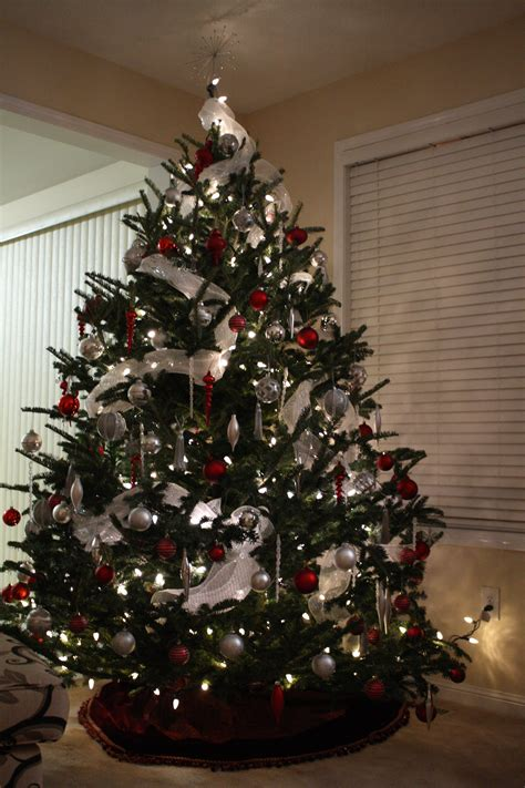 home design 81 outstanding outdoor christmas tree