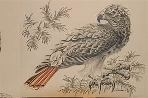 Geoff Sandhurst, Artist, Calgary, Alberta: Red Tailed Hawk ...